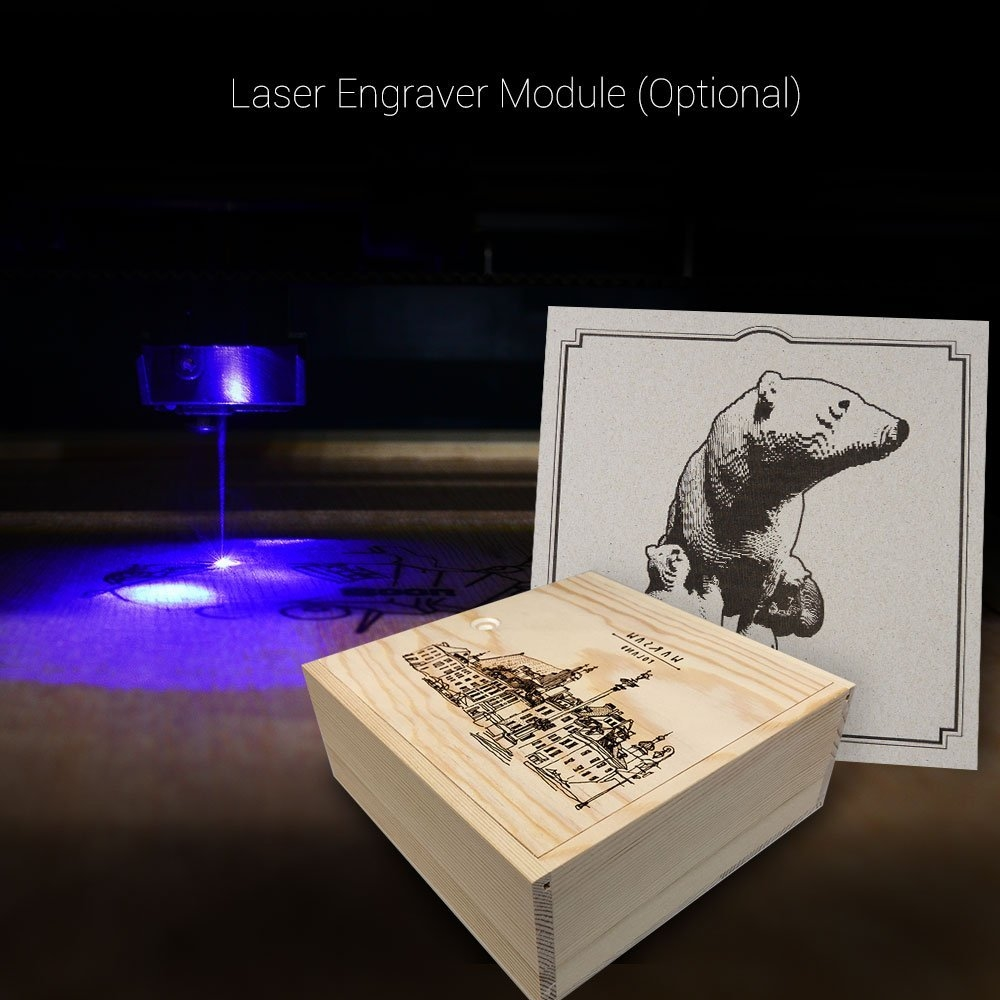Picture for category Laser Engraver Module
